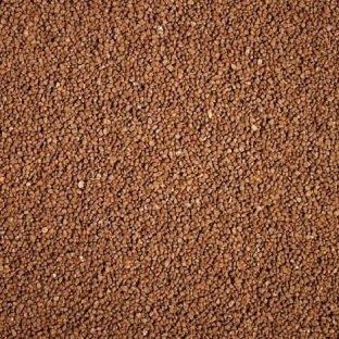 Gravier Quartz marron Dennerle - Prêt à l'emploi