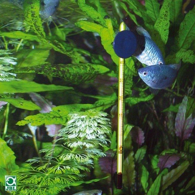 Thermomètre pour aquarium JBL