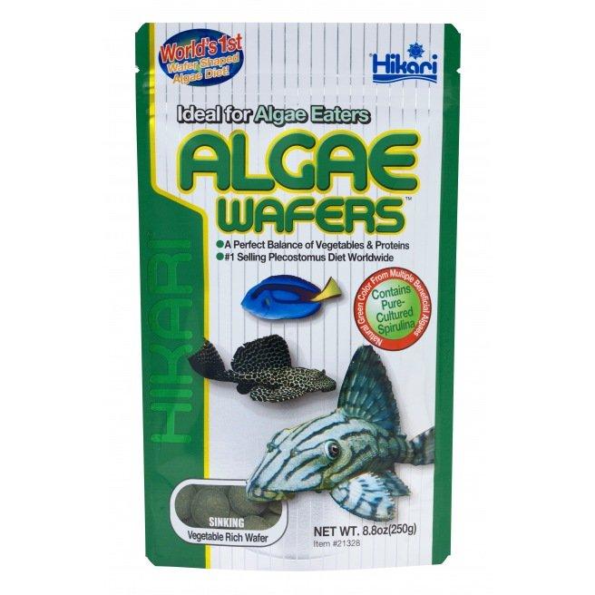 Hikari Algae Wafers 250 gr