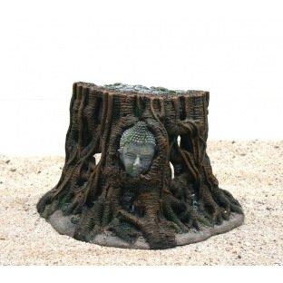 Aqua Della 431481 Buddha Tree 25x14x15cm