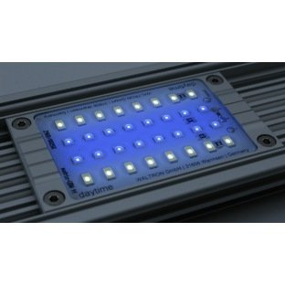 Daytime Matrix Module Ultra Bleu White de 8000 kelvin