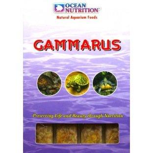FFF Gammarus