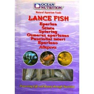 FFF Lance Fish