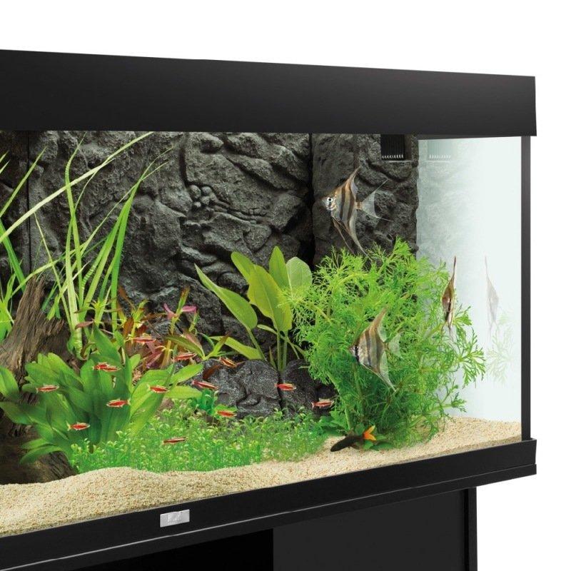 Decoration D Aquarium En 3 Dimensions Aqua Service Courcelles