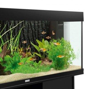 Décor 3D - Juwel STR 600 - Plaque de fond