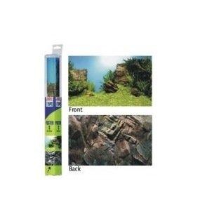 Juwel Poster 1 rocher et plantes