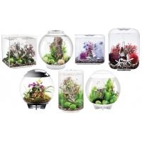 Aquariums de décoration biOrb