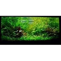 Meubles pour aquariums ADA