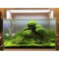 d coration pour aquarium d 39 eau douce froide ou chaude. Black Bedroom Furniture Sets. Home Design Ideas